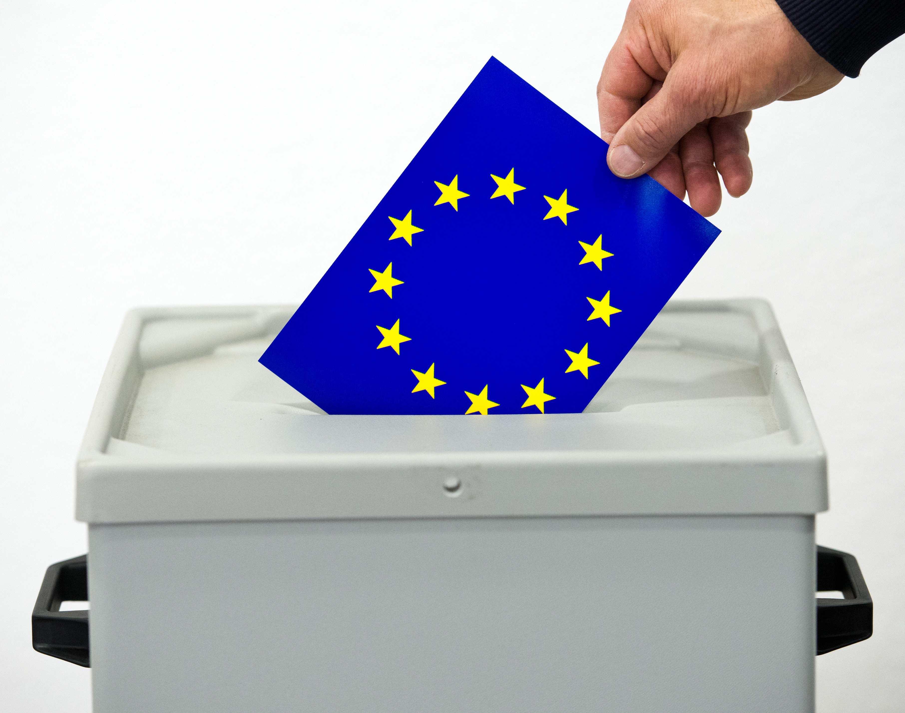 Elezioni Europee| Affluenza alle urne nei Campi Flegrei alle ore 12: Bacoli in testa con il 12,8%