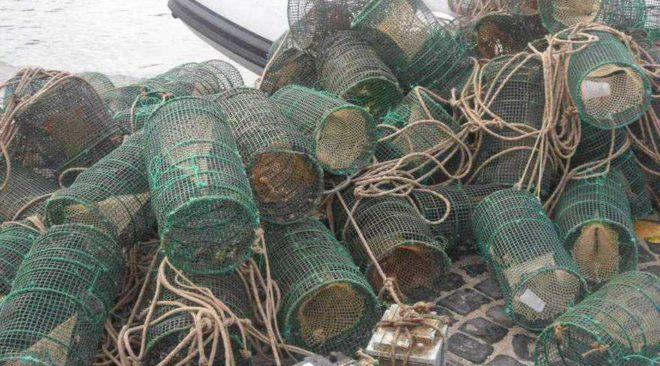 BAIA/ Sequestrate 60 nasse nell'area marina protetta, liberato in mare il pescato