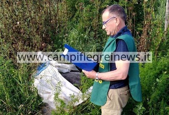 LICOLA/ Task force di carabinieri e guardie Lipu contro i reati ambientali