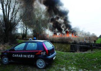 LICOLA/ Incendia rifiuti speciali nel suo terreno, arrestato un 71enne