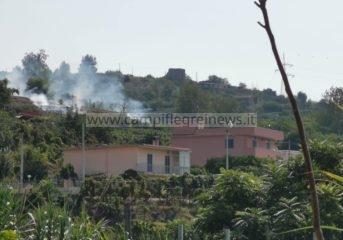ULTIMORA/ Incendio a Cigliano lambisce le case, vigili del fuoco a lavoro