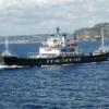 IL CASO/ Furto di 5 chili di pesce ad un passeggero nel salone del traghetto Pozzuoli-Ischia