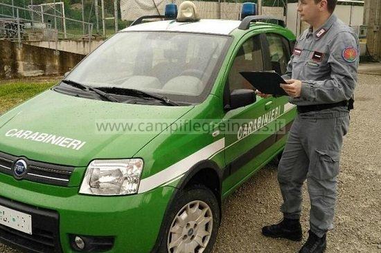 VARCATURO/ Rifiuti speciali e pericolosi in un casolare abbandonato: sequestri e denunce dei carabinieri forestali