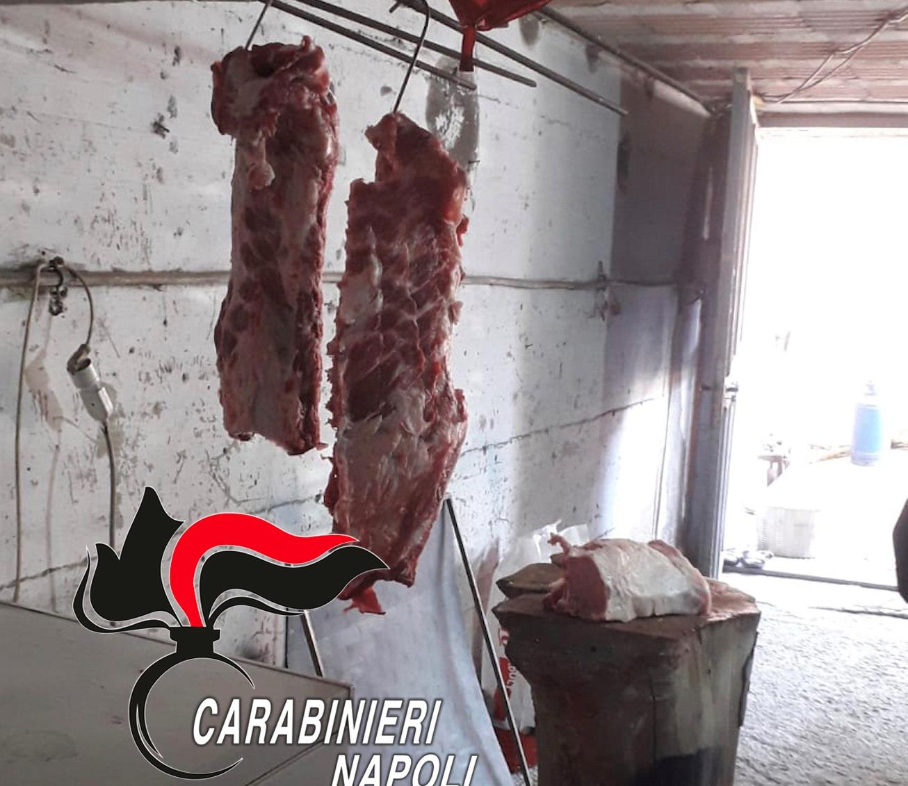 Macellavano carne sudicia nel seminterrato della casa, denunciate due persone